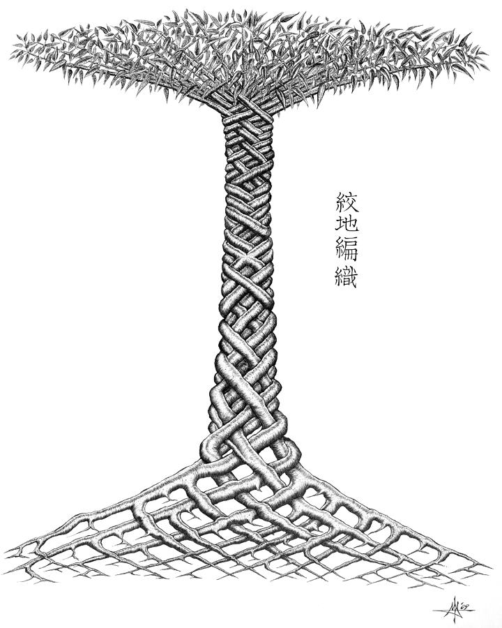 Weave Tree Drawing  - Weave Tree Fine Art Print
