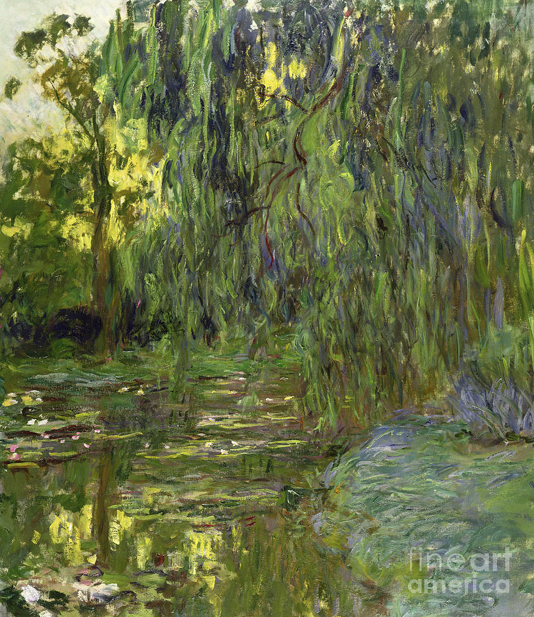 Weeping Willows The Waterlily Pond At Giverny Painting