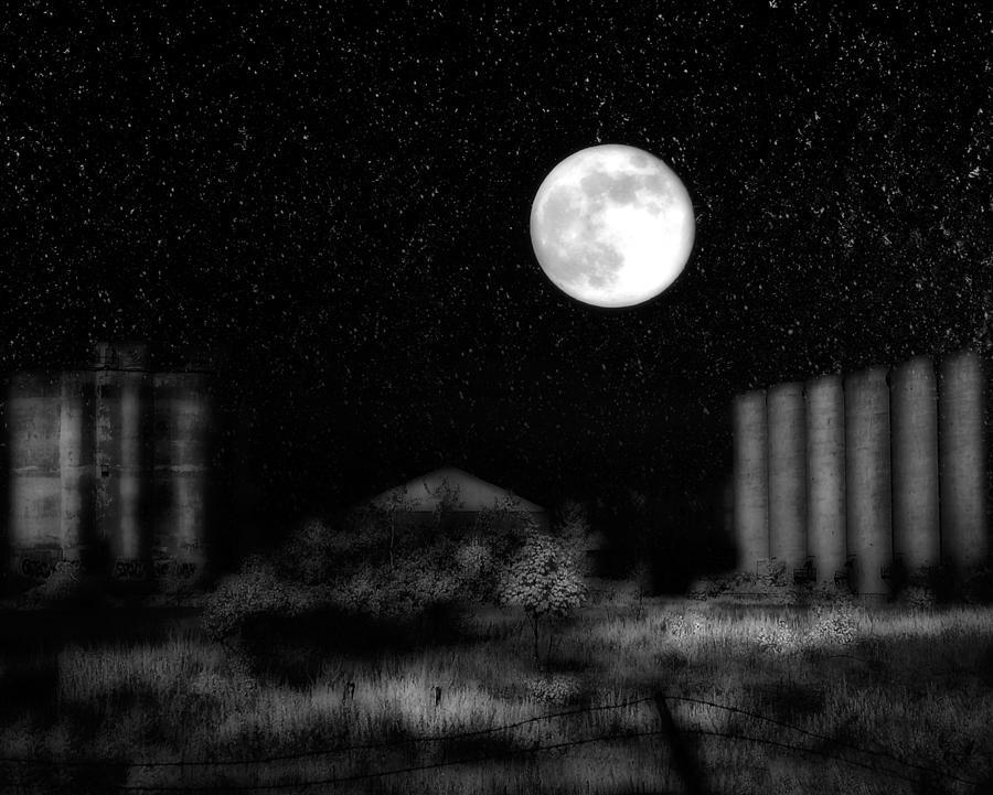 Weird Night Photograph