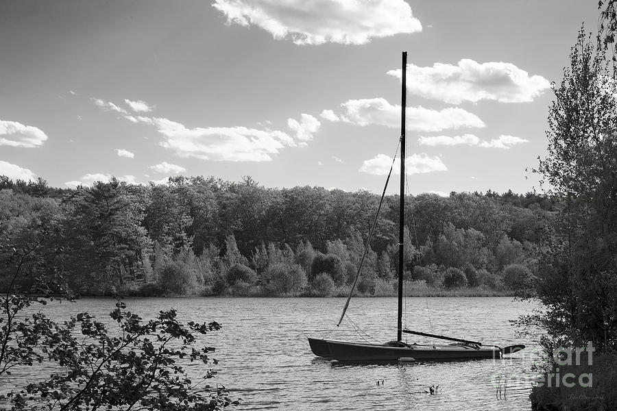 Wellesley College Waban Lake Photograph