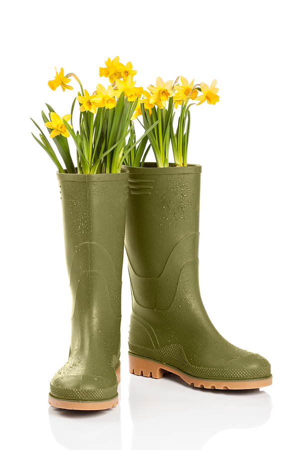 Wellington Boots Photograph  - Wellington Boots Fine Art Print