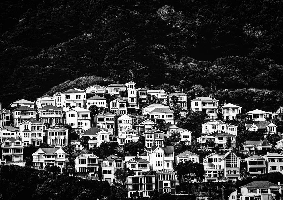 Wellington Hillside Photograph