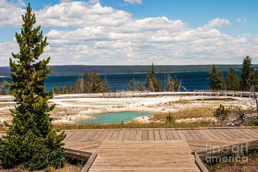 West Thumb Geyser Basin Photograph  - West Thumb Geyser Basin Fine Art Print