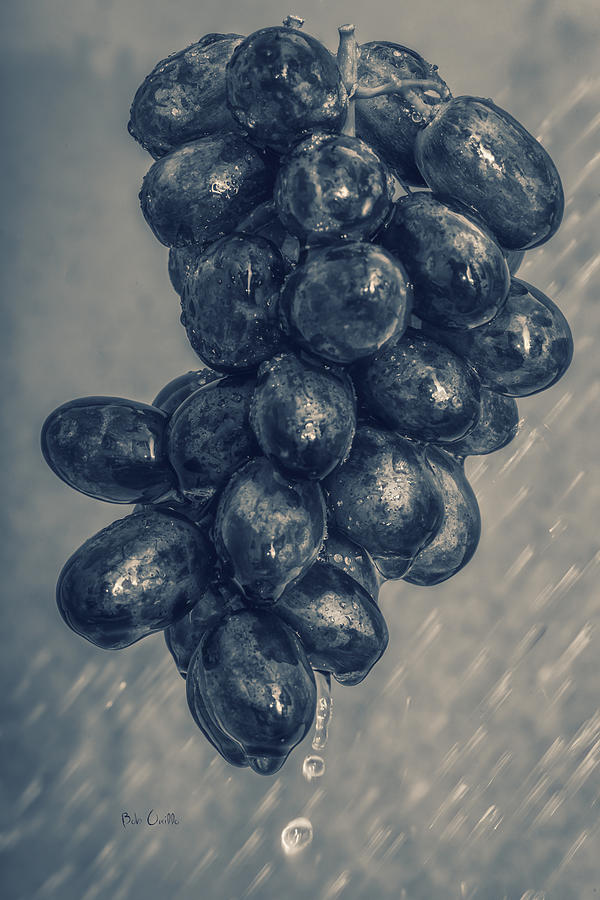Wet Grapes Five Photograph