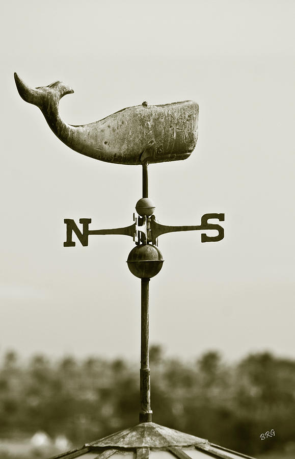 Whale Weathervane In Sepia Photograph
