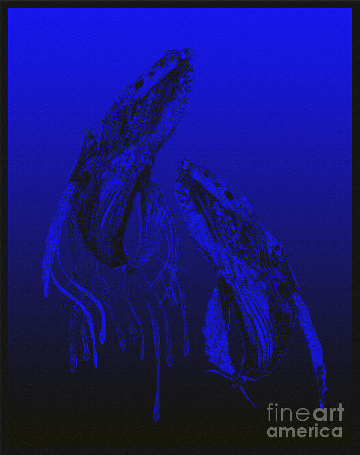 Whales_blueback10a Digital Art  - Whales_blueback10a Fine Art Print