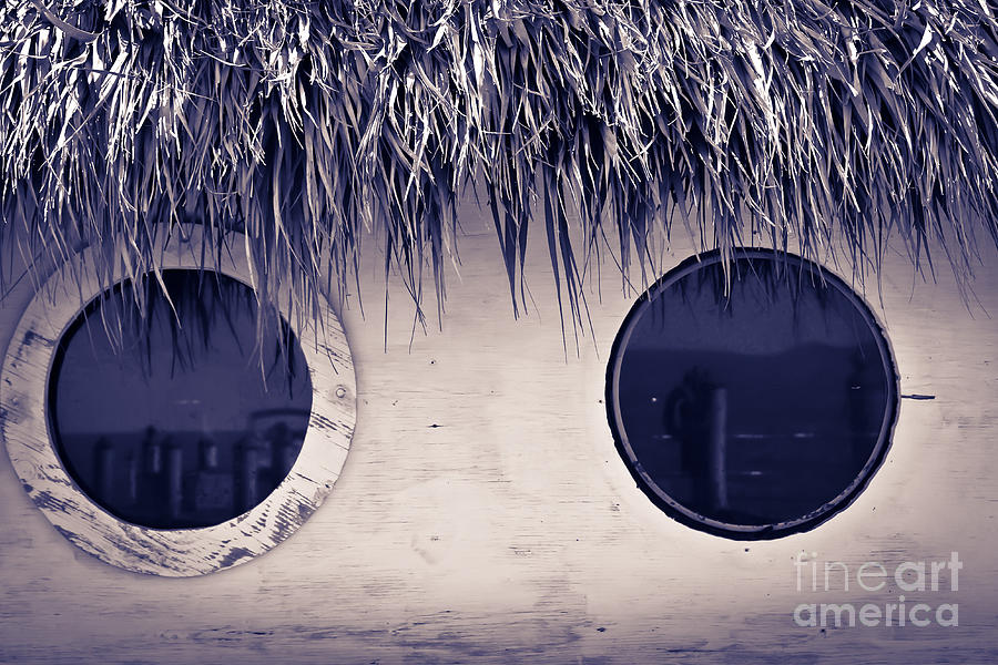 What Do You See Photograph  - What Do You See Fine Art Print