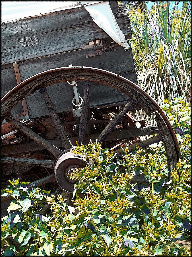 Wheels In The Garden Photograph - Wheels In The Garden by Glenn McCarthy Art and Photography