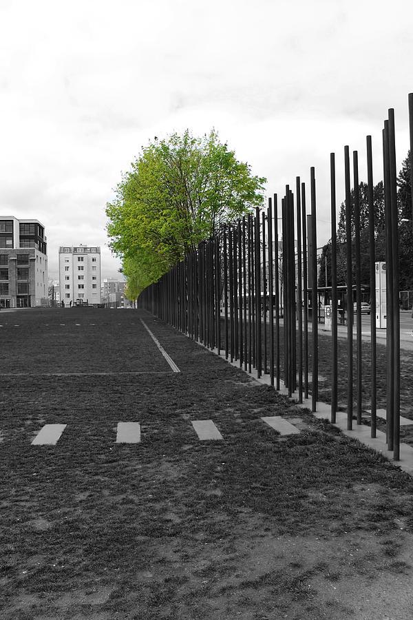 Berlin Wall Gdr Ddr Mauerverlauf Mauer East Bernauer Strasse Remember Memorial Photgraph Sw Bw Schoenholzer Strasse Inhumanity  Photograph - When Hope Blooms Again by Stefan Kuhn