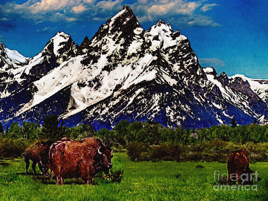 Where The Buffalo Roam Painting  - Where The Buffalo Roam Fine Art Print