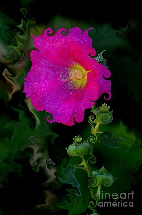 Whimsical Delight Photograph  - Whimsical Delight Fine Art Print