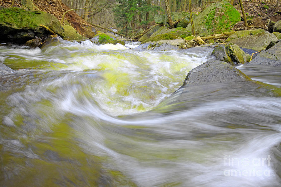 Waterfall Photograph - Whirlpool In Forest by Charline Xia