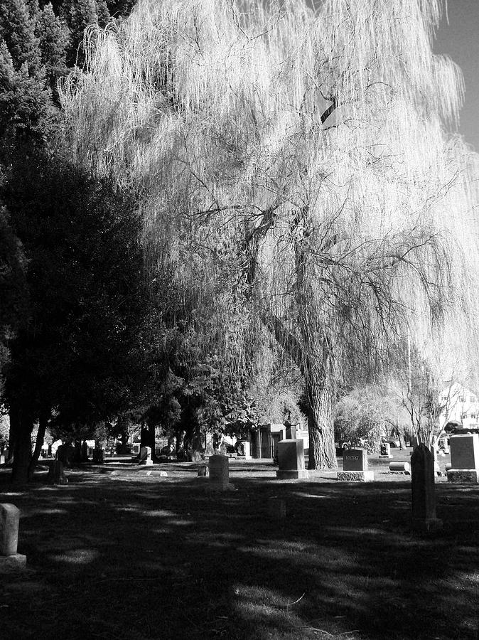Cemetary Photograph - Whispering In The Wind... by Heather L Wright