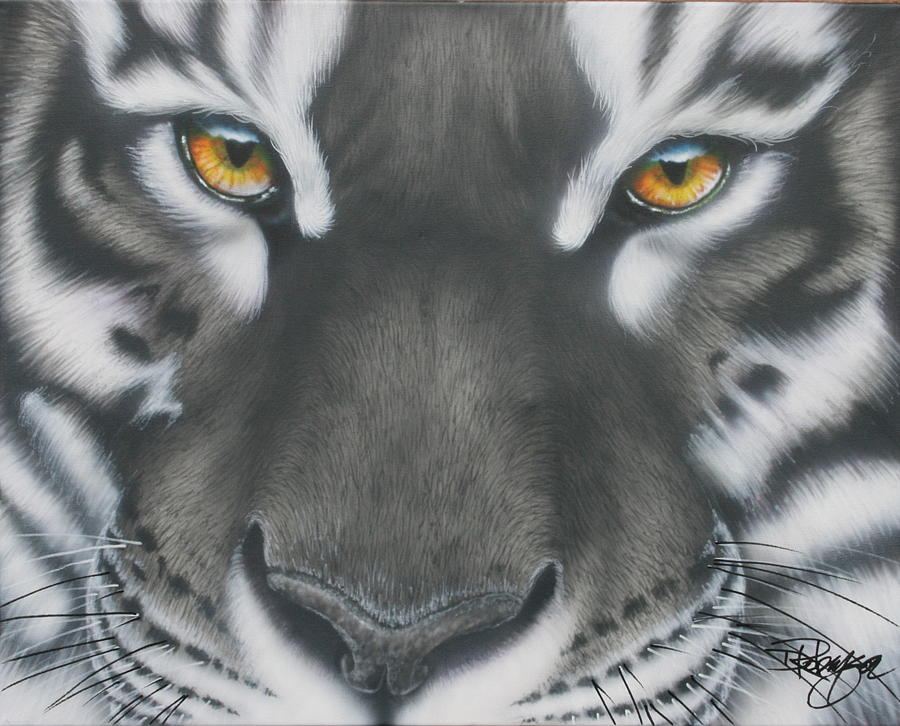Black And White Tiger Eyes Paintings Tiger Eyes Black And White