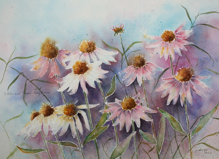 White And Pink Coneflowers Painting  - White And Pink Coneflowers Fine Art Print