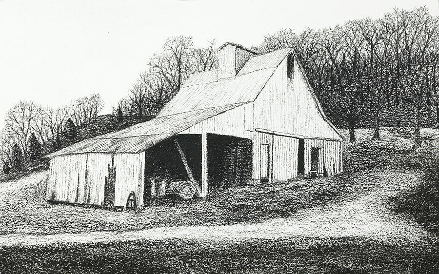White Barn On Bluff Road Drawing  - White Barn On Bluff Road Fine Art Print