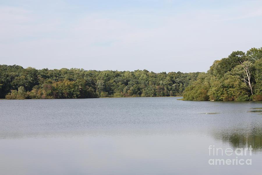 White Heron Lake Poconos Pa IIi Photograph