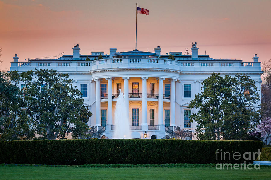 White House Photograph  - White House Fine Art Print
