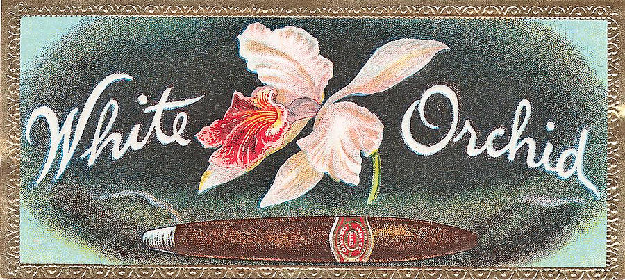gallery for gt cigar label art