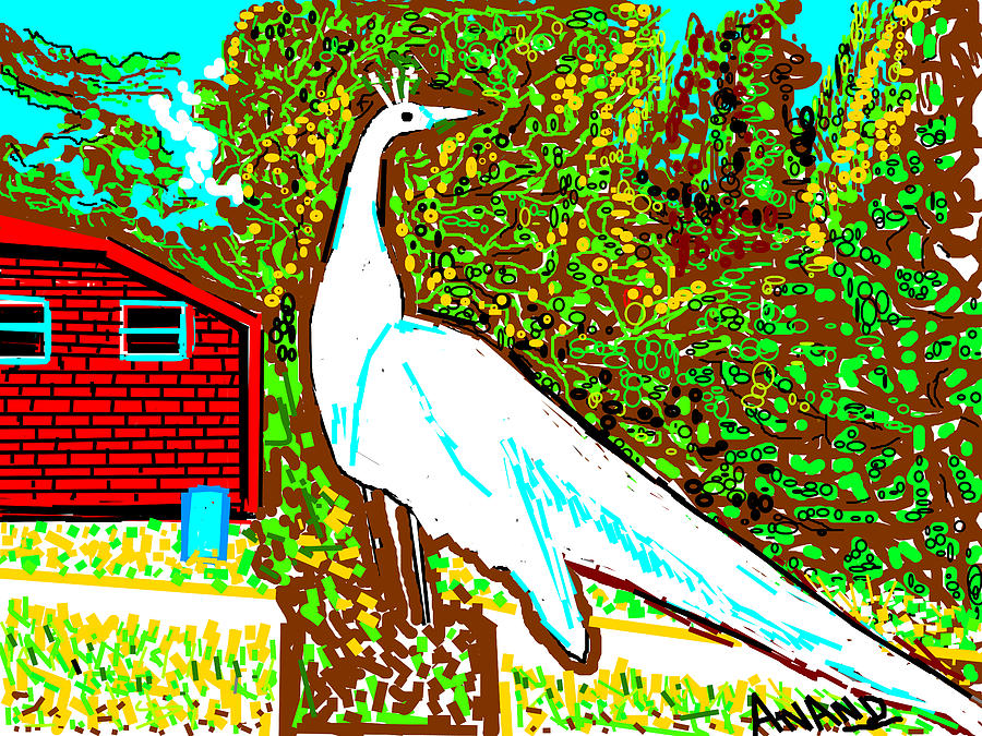 White Peacock Digital Art  - White Peacock Fine Art Print