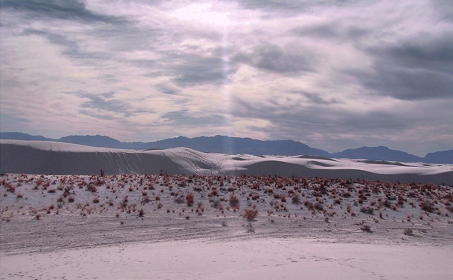 White Sand Pyrography