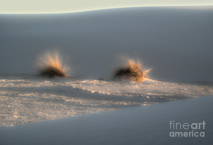 White Sands New Mexico Dune Photograph