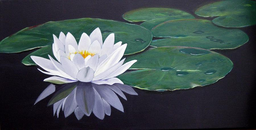 White Water Lilly Painting  - White Water Lilly Fine Art Print