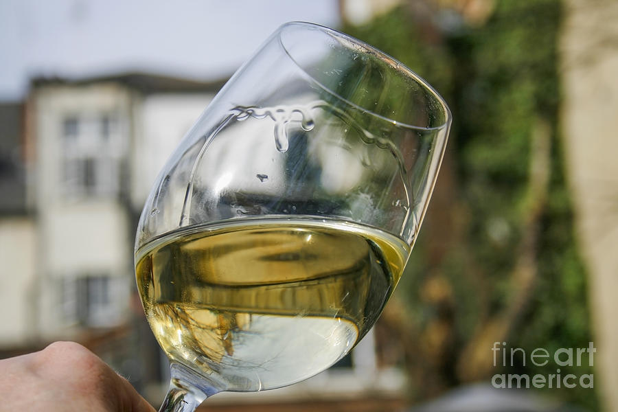 White Wine Swirling In A Glass Photograph