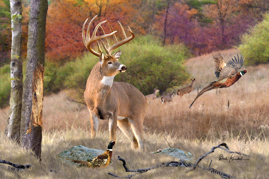 Whitetail Deer Art Collection Fine Art Whitetail Art Prints Painting Paintings
