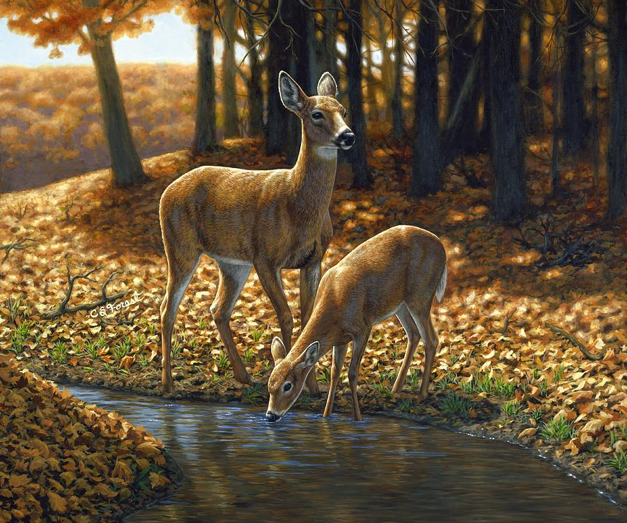 Whitetail Deer - Autumn Innocence 1 Painting  - Whitetail Deer - Autumn Innocence 1 Fine Art Print