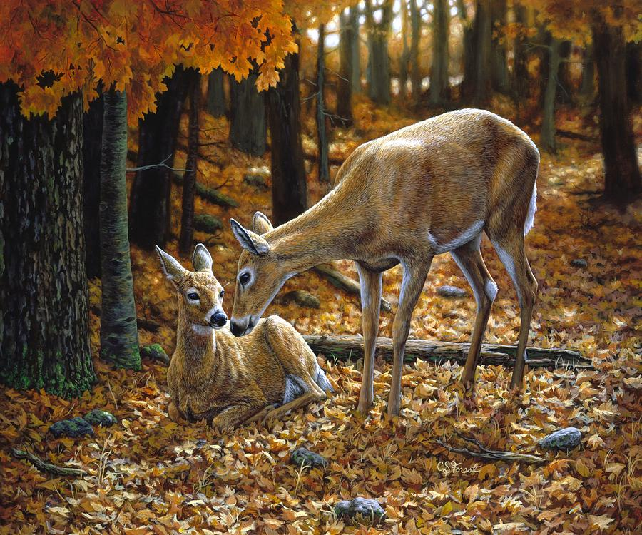 Whitetail Deer - Autumn Innocence 2 Painting  - Whitetail Deer - Autumn Innocence 2 Fine Art Print