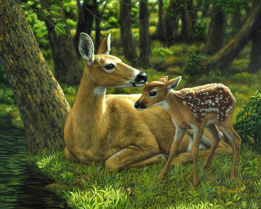 Whitetail Deer - First Spring Painting  - Whitetail Deer - First Spring Fine Art Print