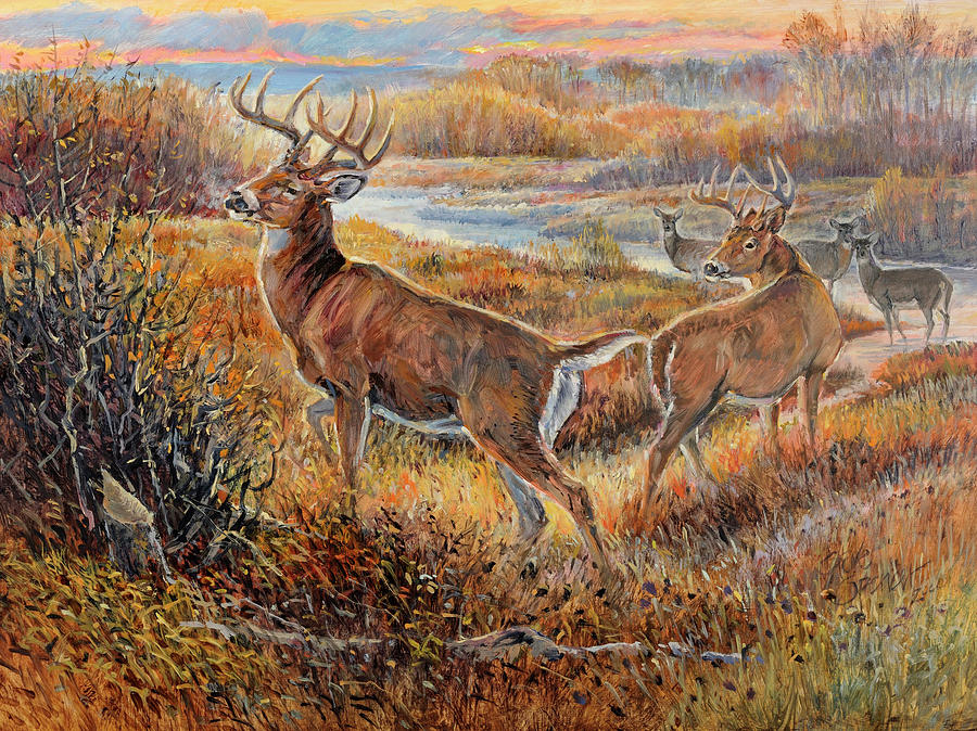 Whitetail Sunrise Painting