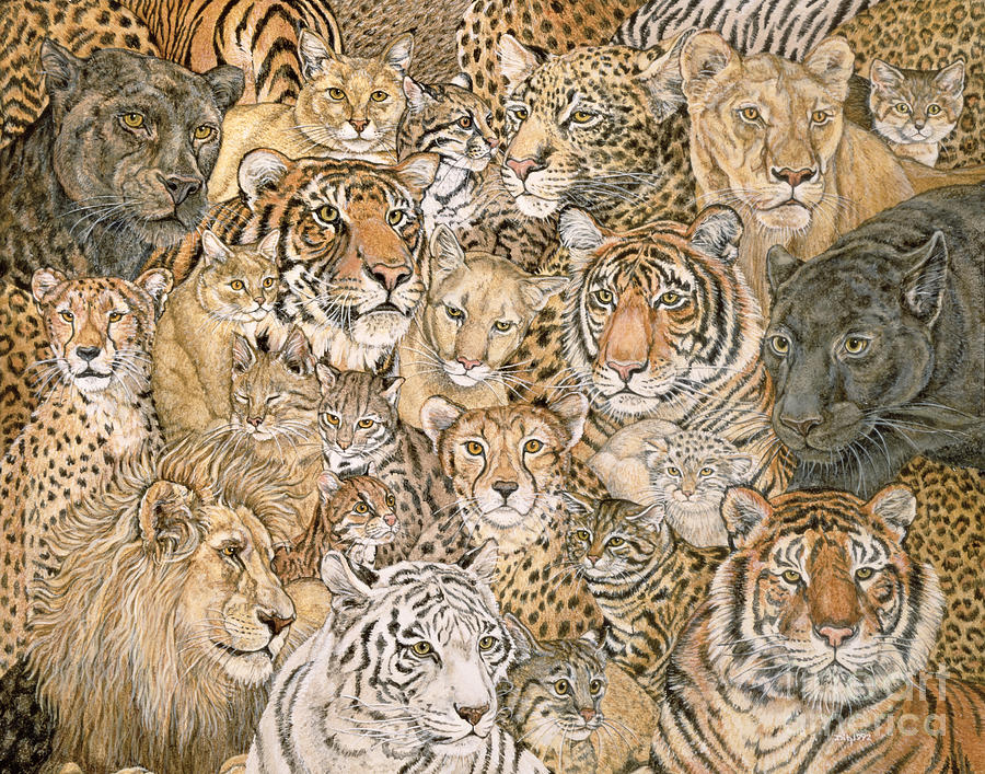 Wild Cat Spread Painting  - Wild Cat Spread Fine Art Print