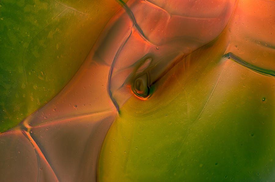 Abstract Photograph - Wild Eyes by Omaste Witkowski