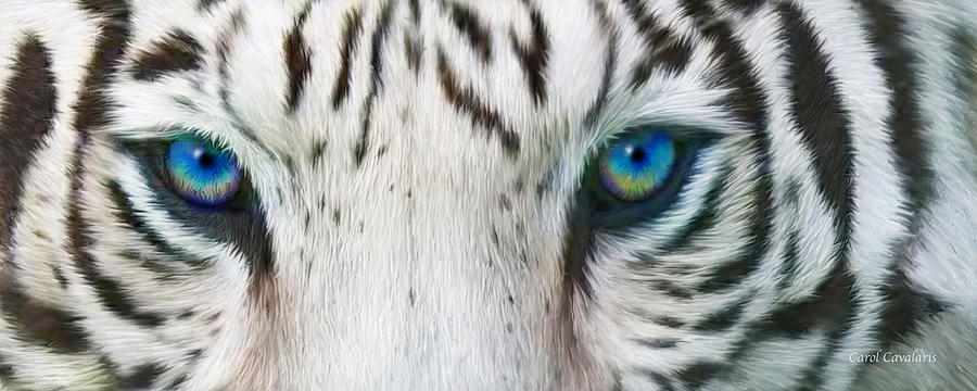 White Tiger With Red Eyes | www.imgkid.com - The Image Kid ...