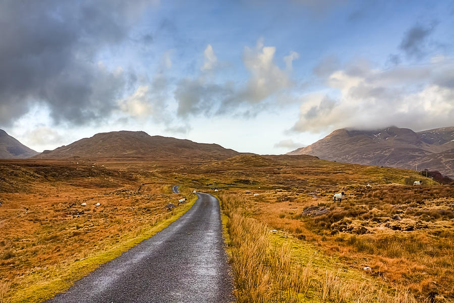 Wild Landscape Of Connemara Ireland Photograph
