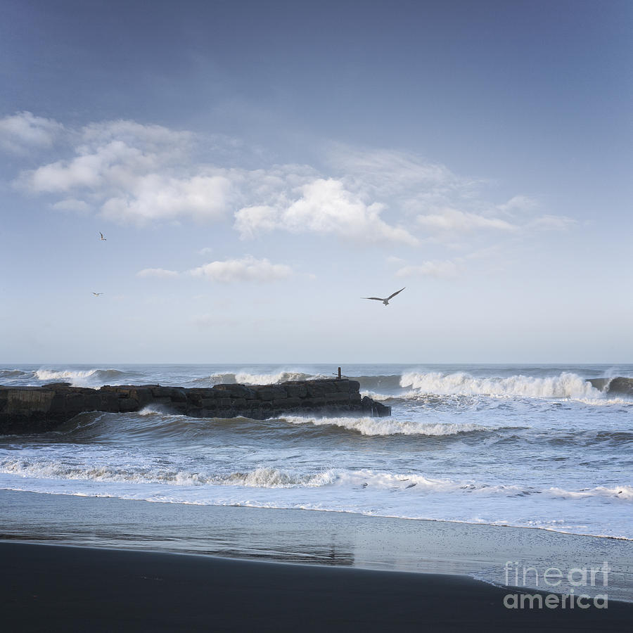 Wild Seascape With Old Jetty And Seagulls Overhead  Photograph  - Wild Seascape With Old Jetty And Seagulls Overhead  Fine Art Print