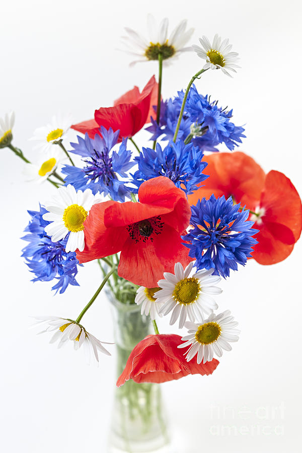 Wildflower Bouquet Photograph