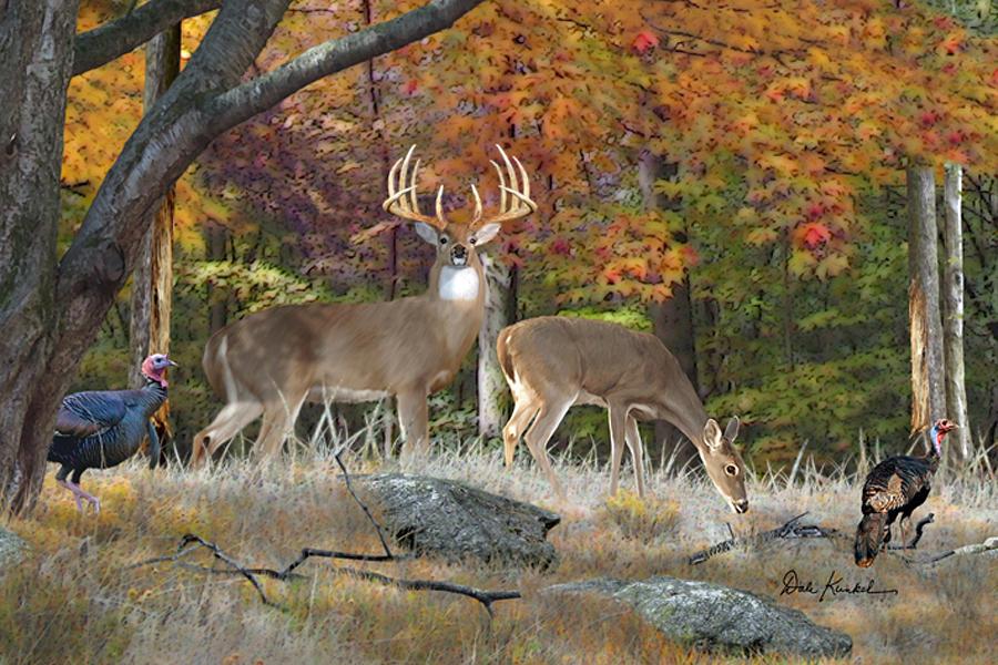 deer art painting artwork print north american wildlife art whitetail deer hunting monster buck King Forest