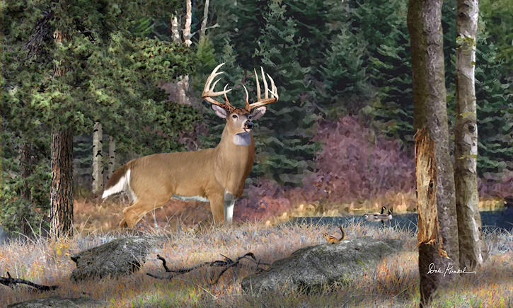 Wildlife Art - Whitetail Deer by Dale Kunkel Art Fine Art Prints ~  x