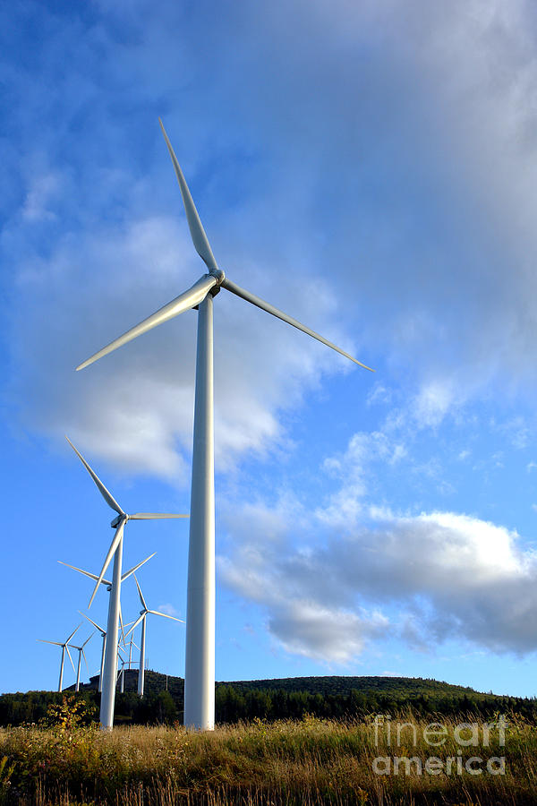Wind Turbine Farm Photograph  - Wind Turbine Farm Fine Art Print