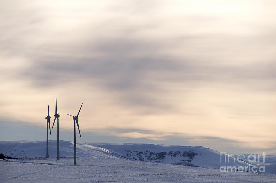 Propellers Photograph - Wind Turbines In Winter by Bernard Jaubert