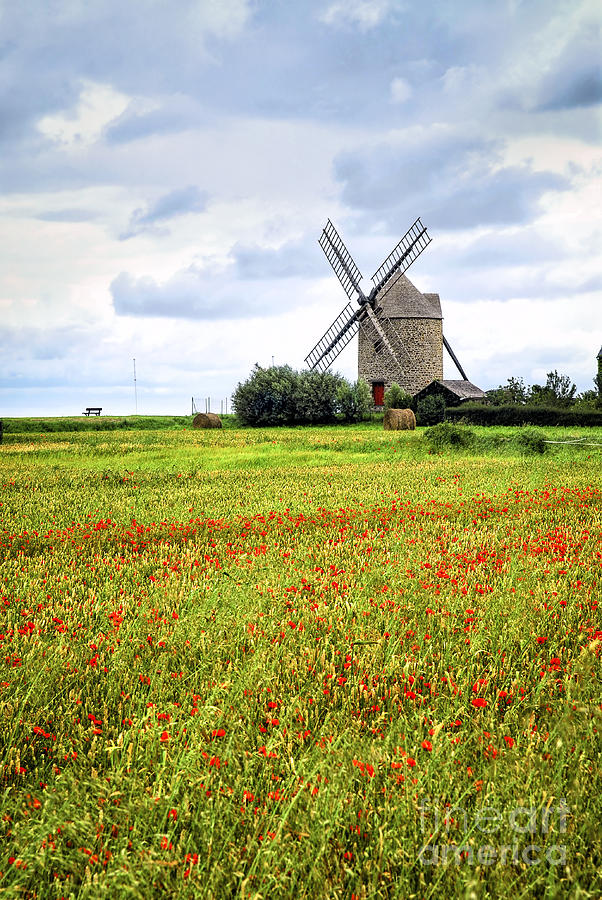 Windmill And Poppy Field In Brittany Photograph  - Windmill And Poppy Field In Brittany Fine Art Print