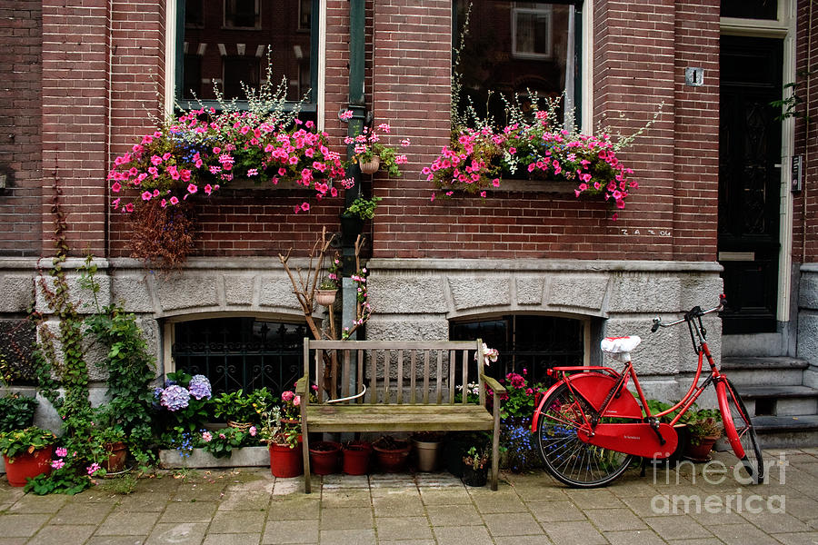 Window Box Bicycle And Bench Photograph