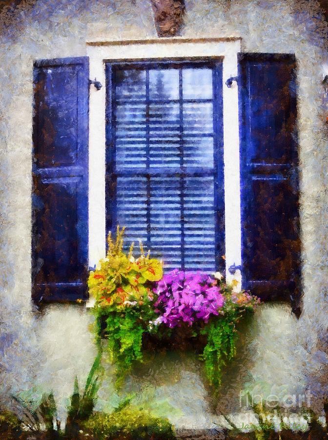 Window Flower Box View Photograph