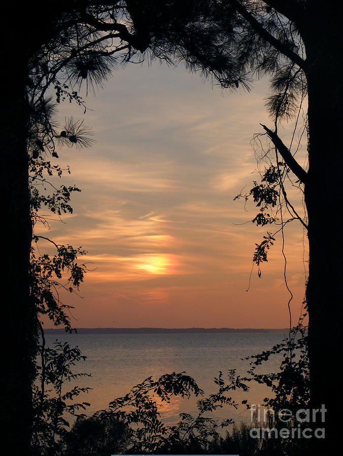 Sunset Photograph - Window To Another World by Ela Sita