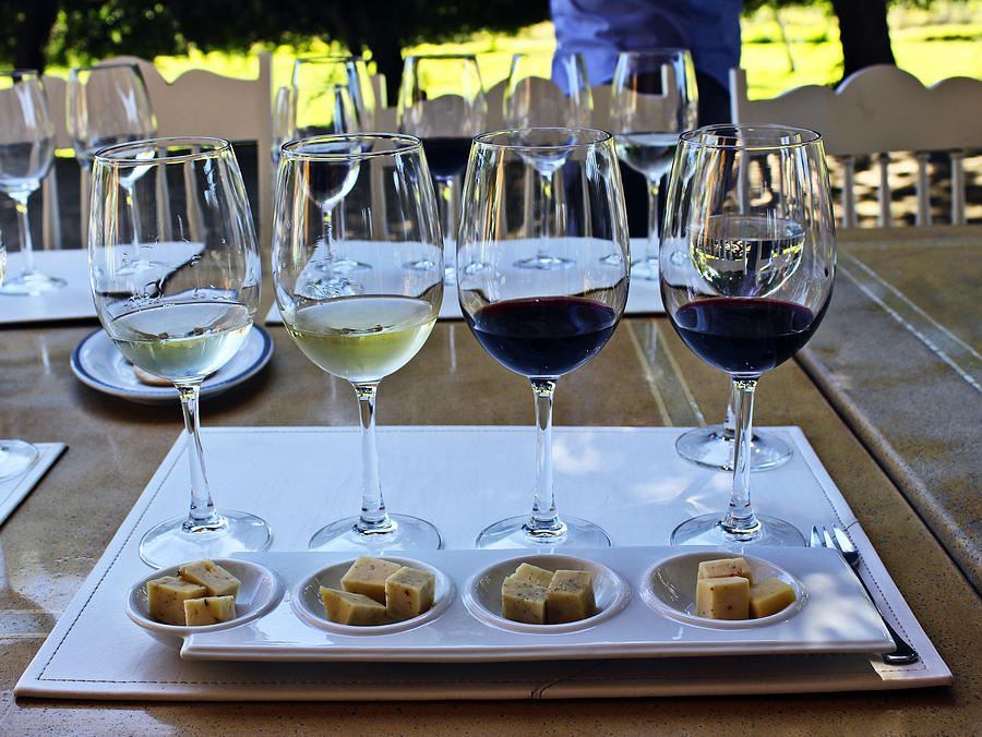 Wine And Cheese Tasting Photograph