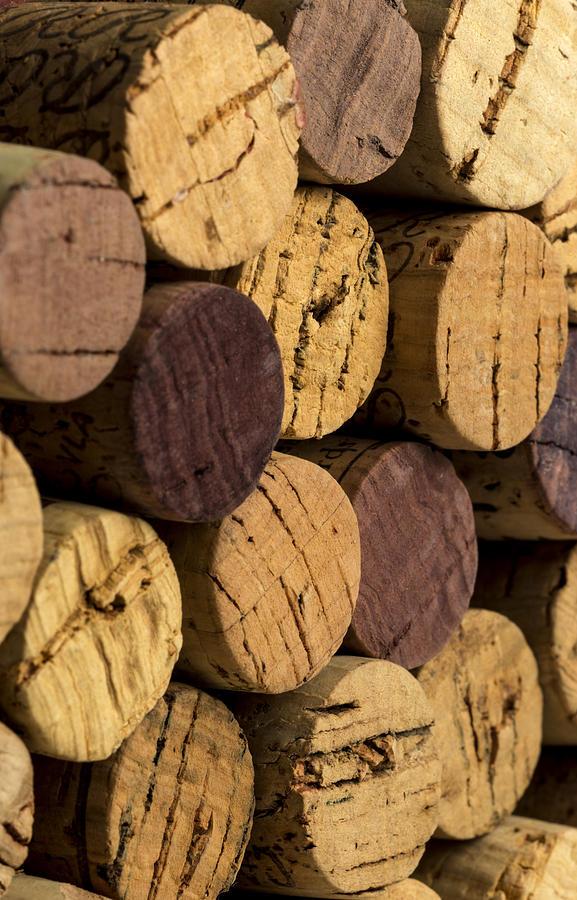 Wine Bottle Corks Photograph