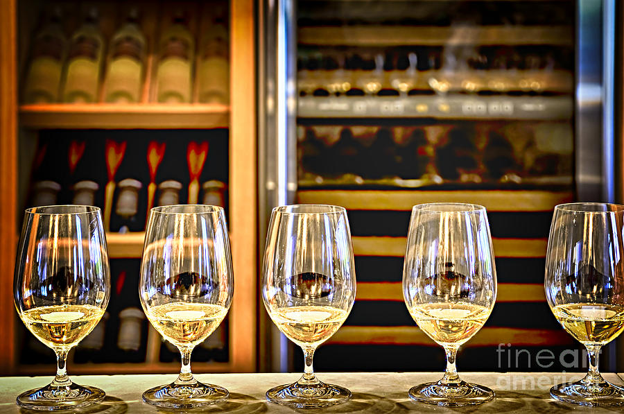 Wine Photograph - Wine Tasting  by Elena Elisseeva